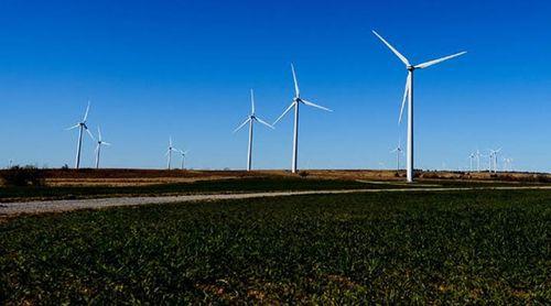 Google đầu tư năng lượng tái tạo.